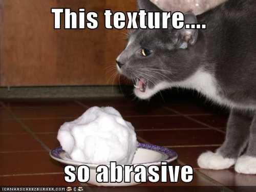 This Texture So Abrasive Lolcats Lol Cat Memes Funny