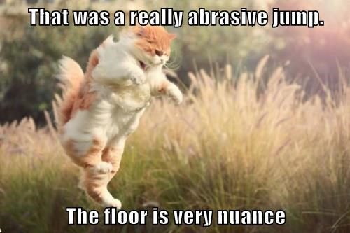 That Was A Really Abrasive Jump The Floor Is Very Nuance Lolcats