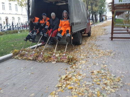 leaves,raking,monday thru friday