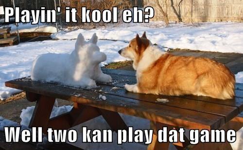 dogs corgi snow snowman - 8336525056