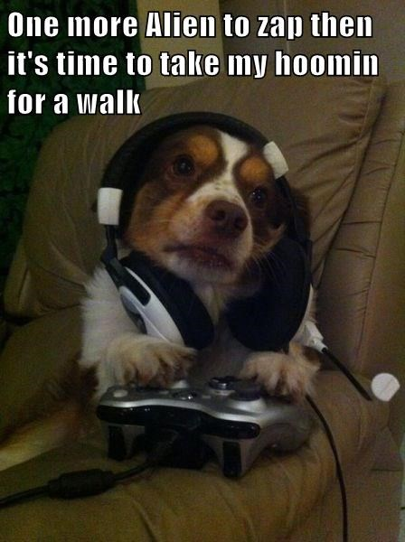 dogs walk video games i have no idea what im doing - 8337104896