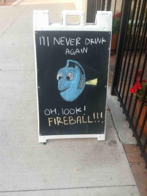 fish drunk fireball funny sign pub after 12 g rated - 8337230592