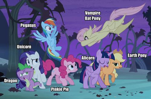 mane 6 pony types - 8337390592