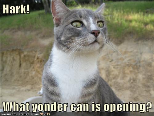 can opener Cats food tuna - 8337987072