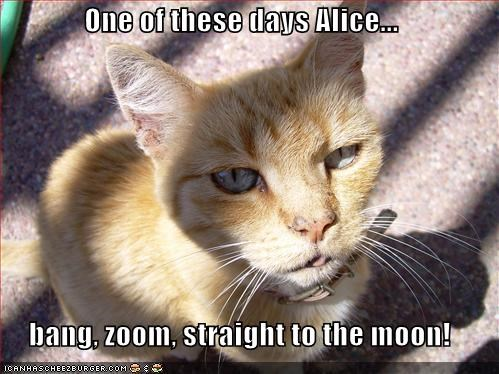 One Of These Days Alice Bang Zoom Straight To The Moon