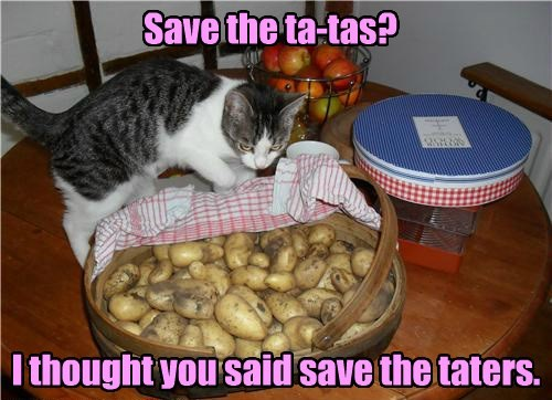 Save the ta-tas? I thought you said save the taters.