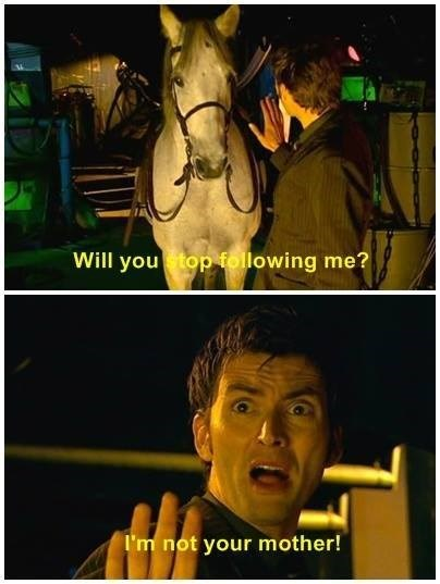are you my mummy,10th doctor,horse