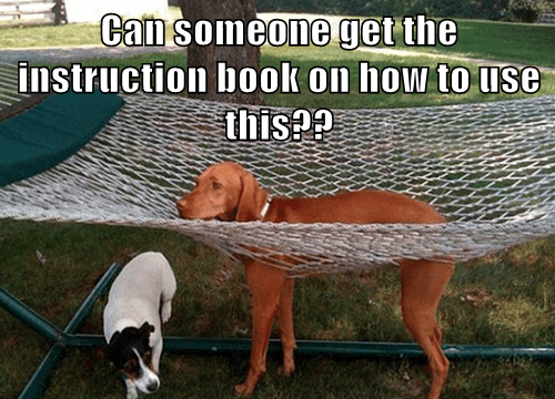 dogs,get,instruction,book,captions