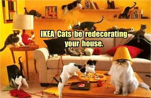 IKEA  Cats  be  redecorating  your  house.