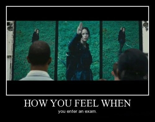 tribute hunger games exam funny