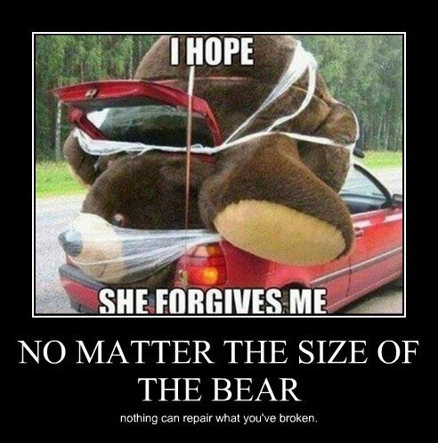 depressing,funny,teddy bear