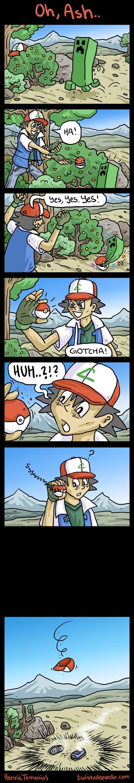 minecraft,Pokémon,web comics