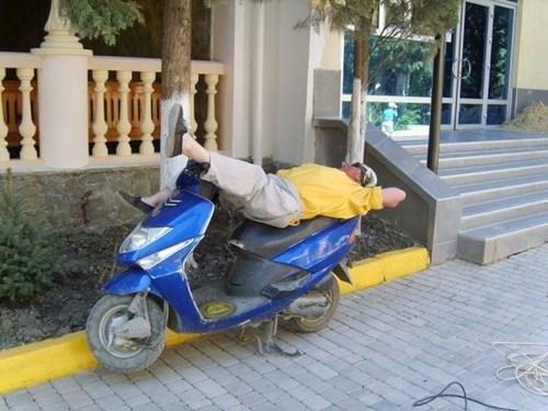scooter,IDGAF,nap