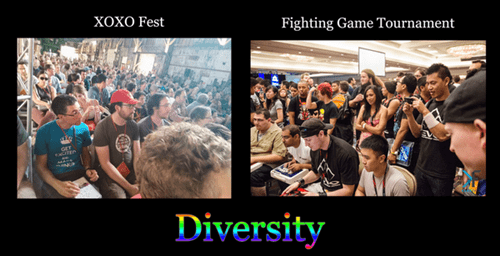 diversity,fighting games