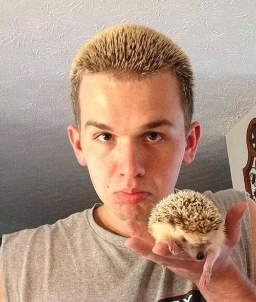 hair,bleach,poorly dressed,totally looks like,hedgehog
