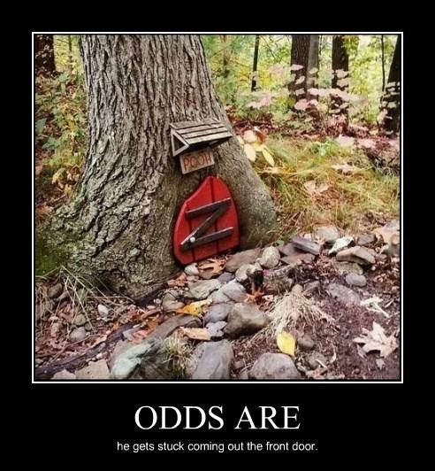 funny pooh tree stuck - 8341671168