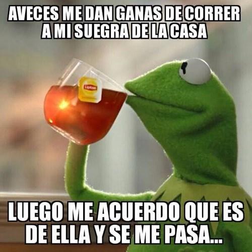 Memes bromas - 8341751808