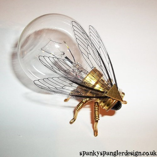 Firefly fly Steampunk - 8341830912