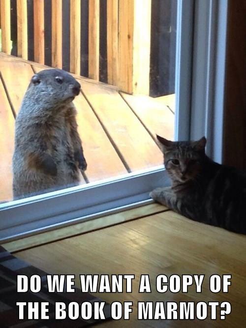 marmot rodent savior book Cats - 8341925376