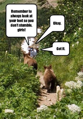 hike lesson bear leader - 8342088960