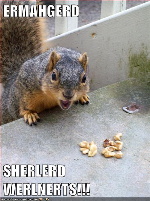 Ermahgerd squirrel nuts - 8342430464