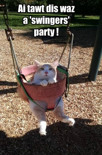 pun Swingers Party swing Cats