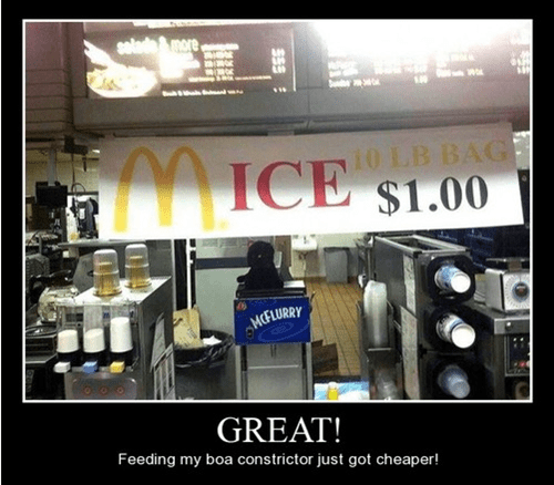 cheap,mice,funny,McDonald's
