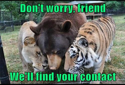 Don't worry, friend We'll find your contact