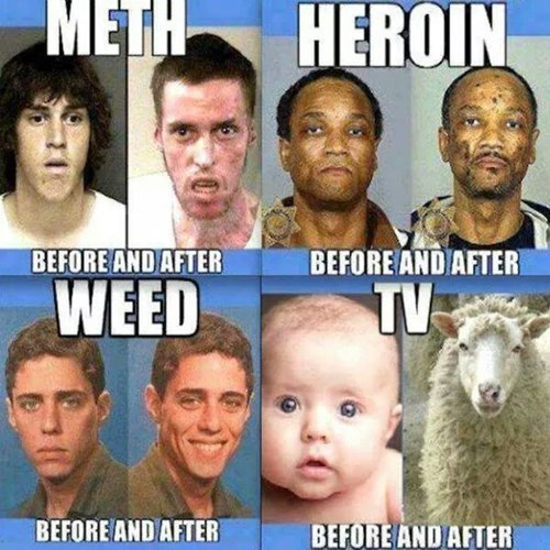 funny,Not Even Once,meth,weed