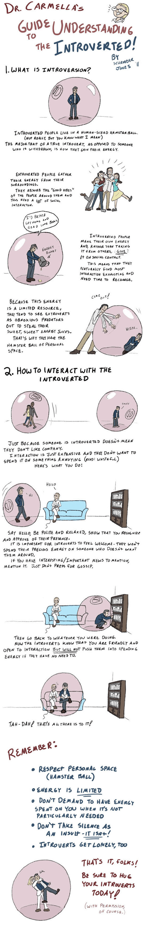 How To introverts web comics gerbil balls - 8343761408