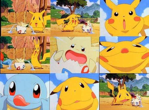 Pokémon squirtle togepi - 8343775744