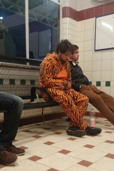 costume onesie poorly dressed tiger g rated