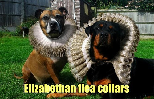 Elizabethan flea collars