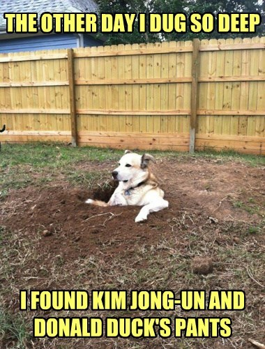 dogs donald duck dig kim jong-un North Korea - 8344343552
