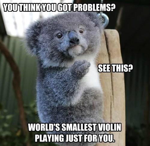 koala - 8344612608