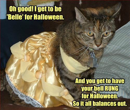 Cats costume Beauty and the Beast halloween - 8344841472