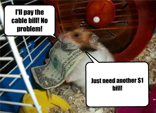 I'll pay the cable bill! No problem! Just need another $1 bill! Can you pay my cable bill, hammy?