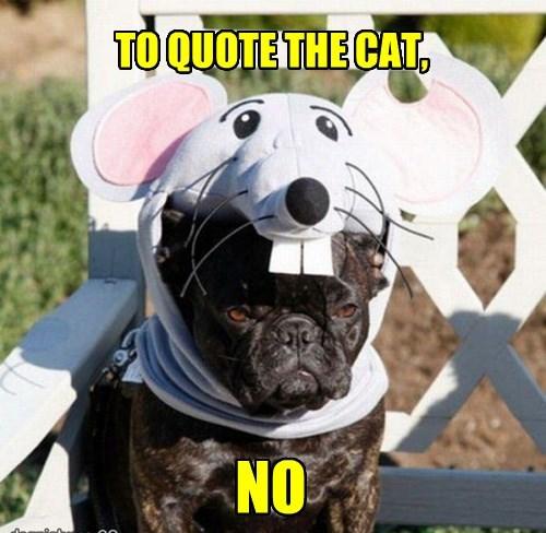 costume dogs halloween - 8346048768