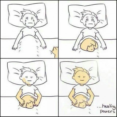 healing bed Cats web comics - 8346341632