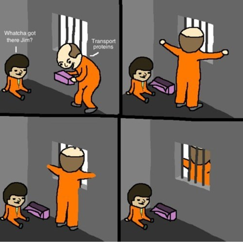 Chemistry cells jail prison puns web comics - 8346450176