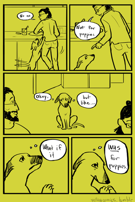 food dogs logic kitchen web comics - 8346542592