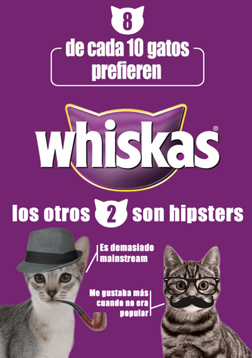 animales medios gatos - 8346561792