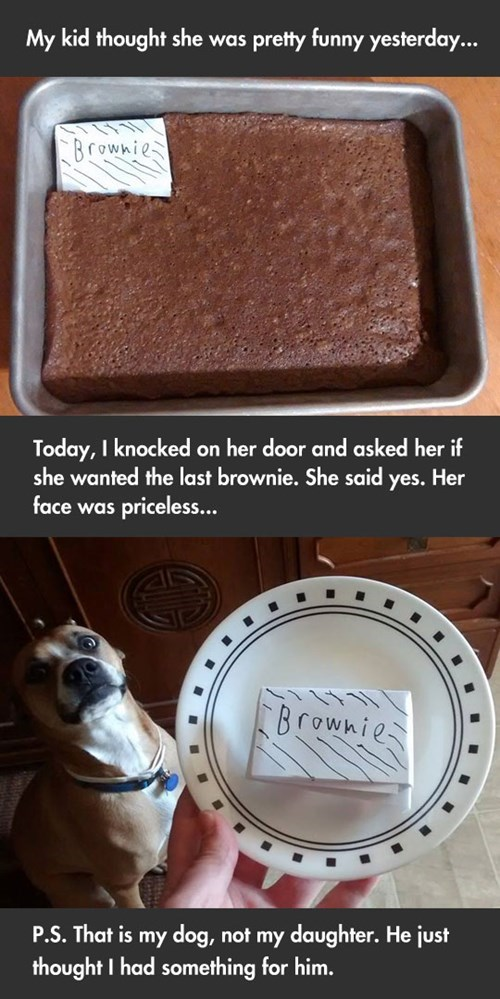 brownies,parenting,g rated