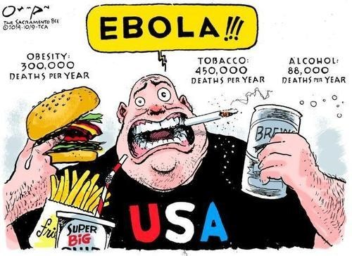 america,ebola,politics,sad but true,web comics