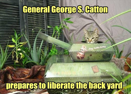 General George S. Catton prepares to liberate the back yard