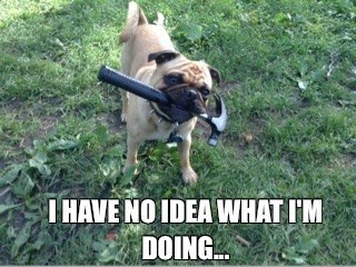 dogs,pug,hammer,i have no idea what im doing