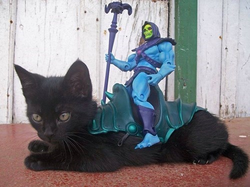 skeletor,kitten,cute,he man,cartoons