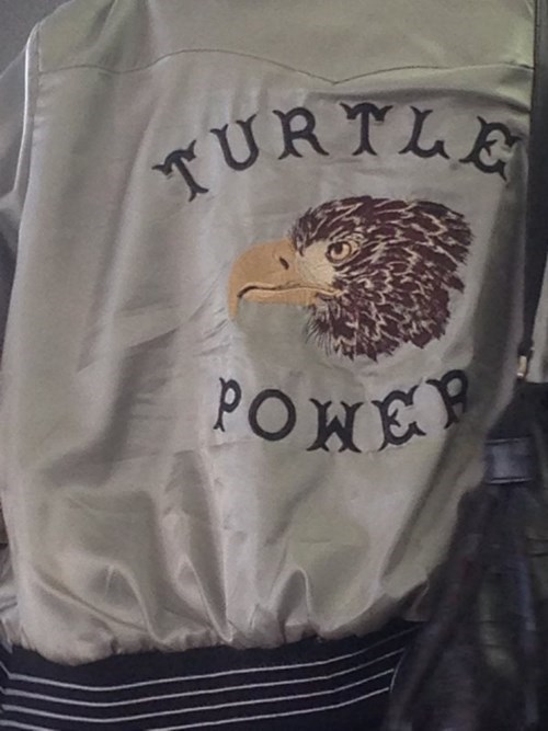 jacket,eagles,poorly dressed,turtle power