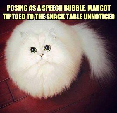 Fluffy bubble Cats - 8347790848