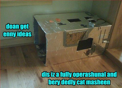 boxes deadly if i fits i sits Cats - 8348720128